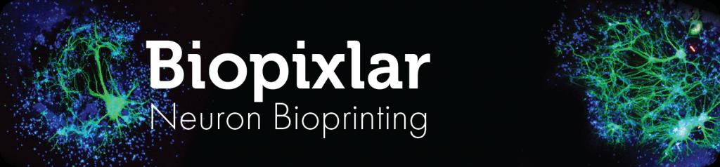 Biopixlar Neuron Bioprinting
