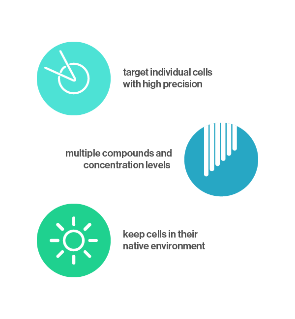 Biozone 6 benefits: target single cells, test multiple compounds, keep cells in native environment